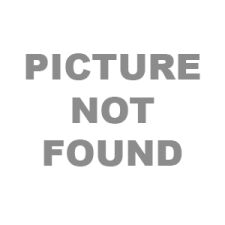 Optimal™ Instrument Trays